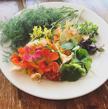 Fresh garnishes from the garden.jpg