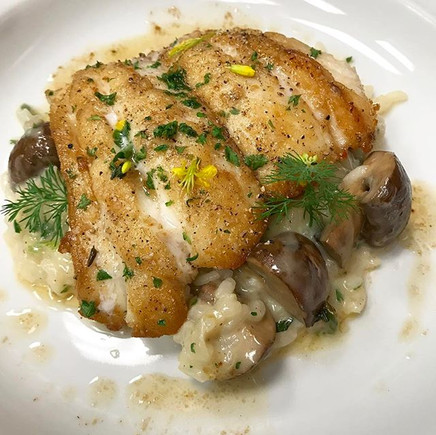 Local caught Grey Grouper with cremini mushroom risotto #jaxpicassos _____#eatdrinkjax #eatlocal #greygrouper #fresh #nomnomjax #devouringja