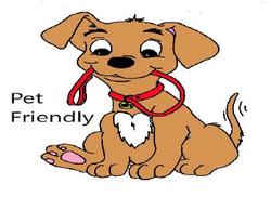 pet friendly squish