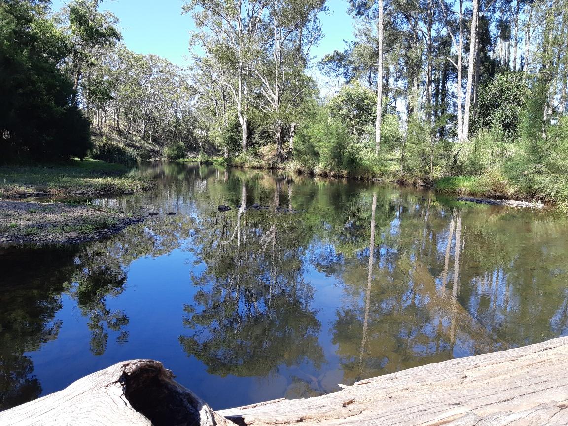 Reflections Galore