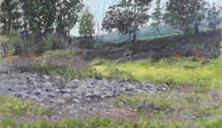 Dry River bed Goomburra (002)