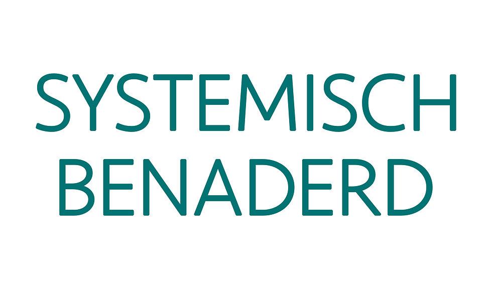 20200601 | SystemischBenaderd_WOORDMERK_