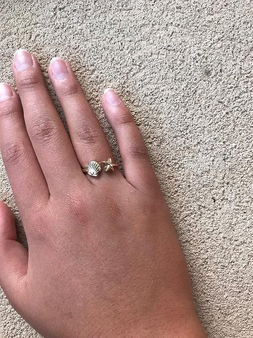 טבעת כוכב וצדף