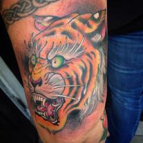 Mean tiger