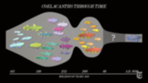 animated-life-fossil-fish.png