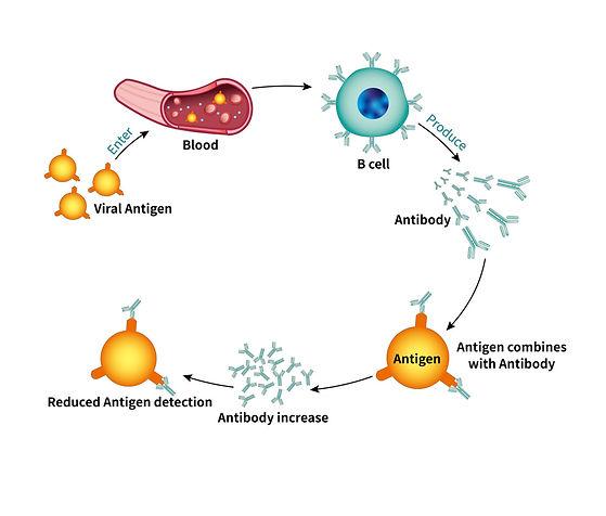 blood antigen testing