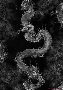 Hiroshi Mehata work 1