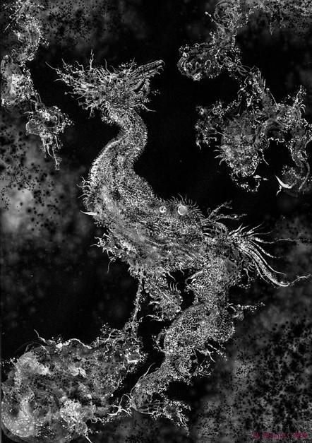 Hiroshi Mehata work 03