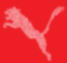 Hiroshi Mehata Visual Works Neconoum1