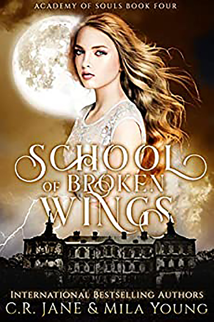 School of Broken Wings