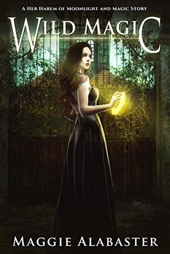 Her Harem of Moonlight and Magic.jpg