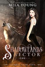 Shadowlands Sector 1.jpg