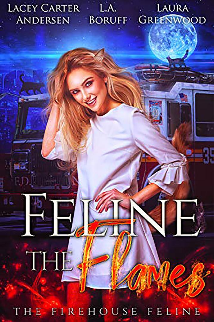Feline the Flames