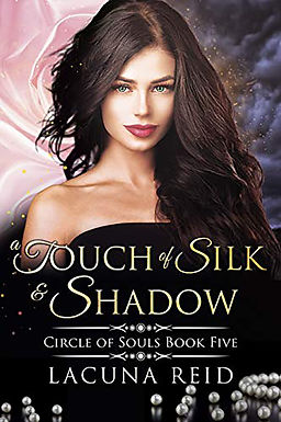 A Touch of Silk and Shadow