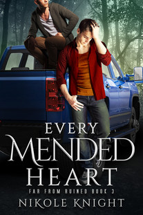 Every Mended Heart