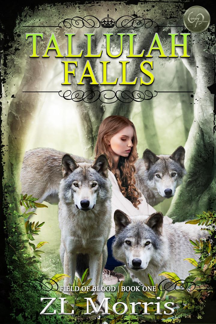 Tallulah Falls