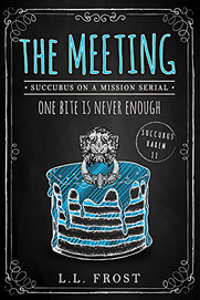 The Meeting: Succubus On A Mission Serial