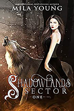 Shadowlands Sector, One