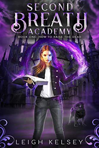 A Necromancer Academy