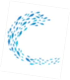 many fishes (1).png