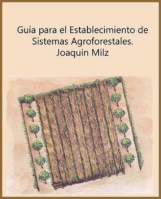 5.-_Guía_para_el_Establecimiento_de_sis
