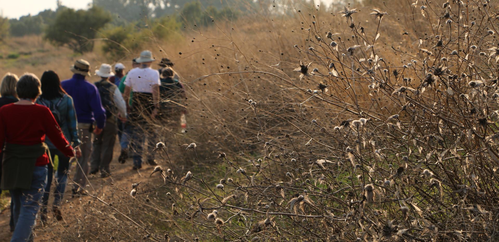 Hiking through Israel.jpg