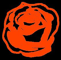 rose_flower.png