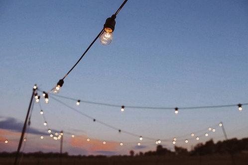 Festoon Lights 20M