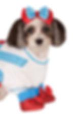 ruby slippers dog.jpg