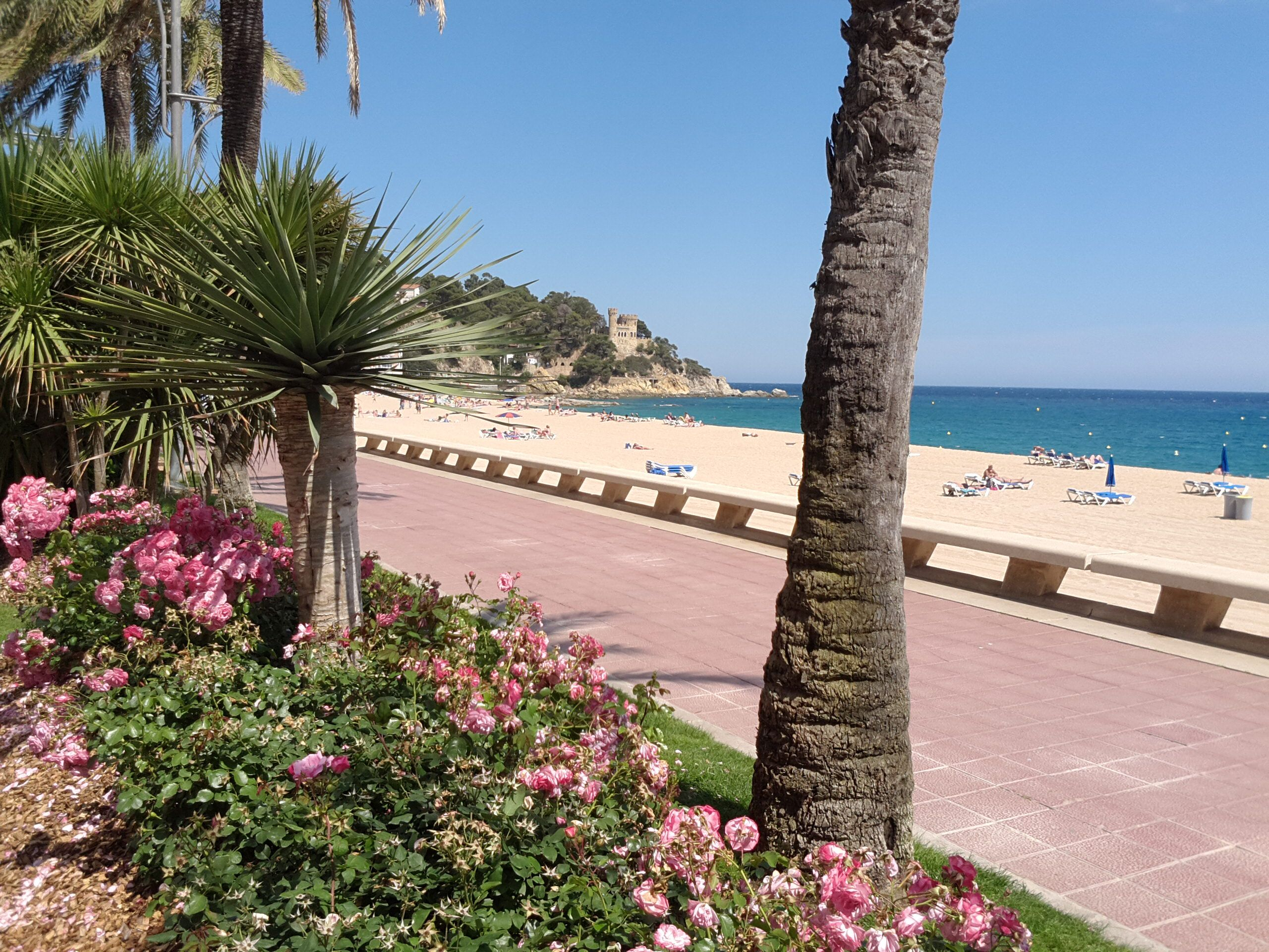 Beach promenade, a 3-minutes-walk