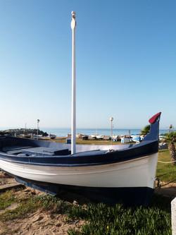 barca-630034