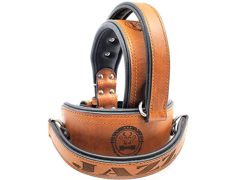 Training Collar Oil Tanned