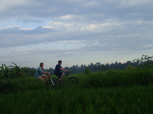 Authentic, Romantic Rice Paddies & Sunset Cycling Tour in Bali - A non-tourist experience of tru
