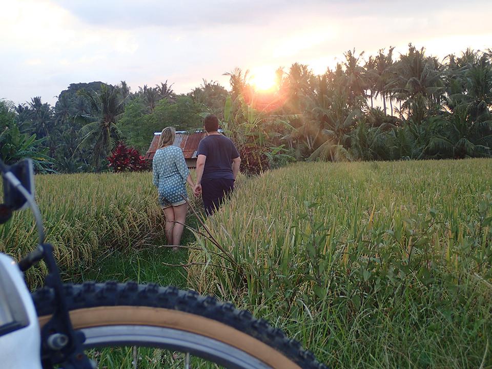 Romantic Cycling Activity, Ubud, Bali