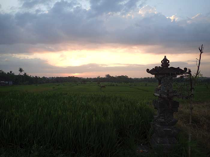 Unique romantic activity in Ubud Bali - Sunset Cycling