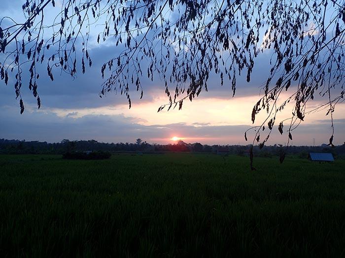 Romantic Sunset Tour, Ubud, Bali
