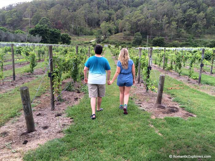 Romantic stroll in the O'Reilly's Canungra Valley Vineyards