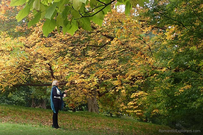 Romantic, Royal Botanic Gardens of Melbourne