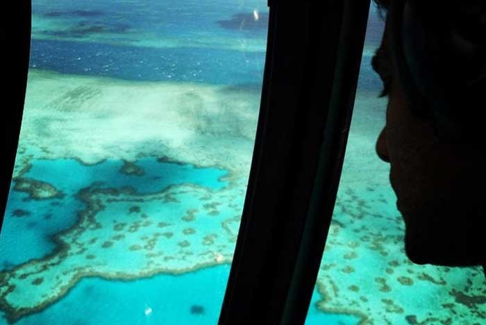 Romantic things to do in Great Barrier Reef - Scenic flight