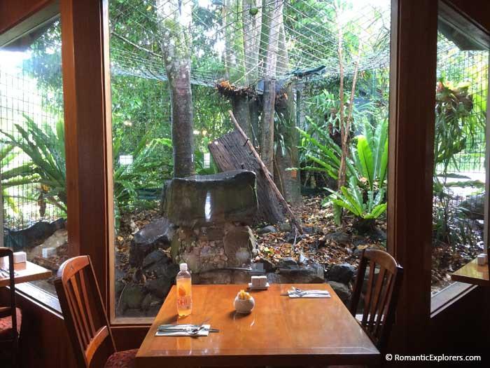 Romantic breakfast spot at O'Reilly's Rainforest Retreat - the perfect romantic getaway