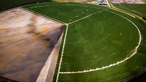 Circle field  N°2