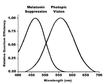 Comparison-of-action-spectra-for-the-nov