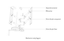 mechanism study