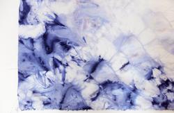Bacterial dye
