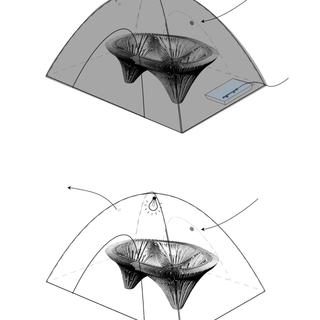 Incubator variations.png