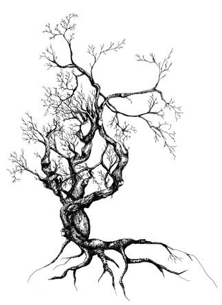 tree+white.jpg