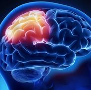 Afecciones neurológicas