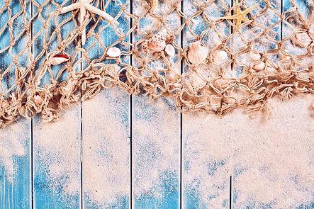 fishnet  on boardwalk.jpg