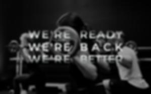 wereback-web.png