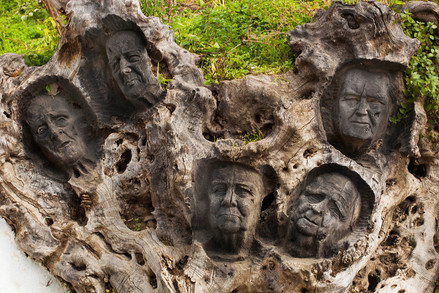 Faces carved in the trunk of a dead olive tree